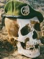 WANO1995